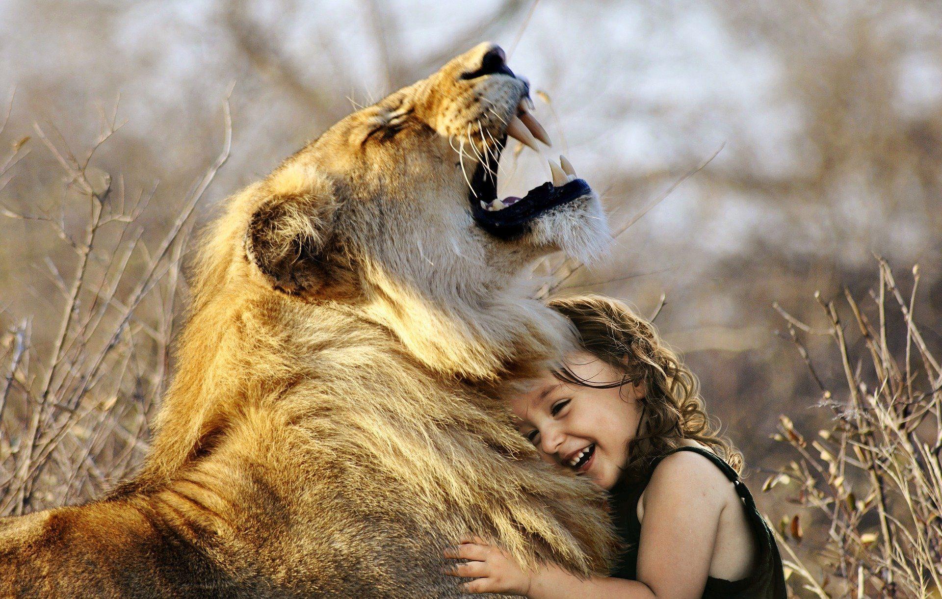 Mut und Vertrauen gegen Angst!